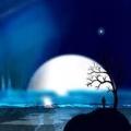 月亮_小婷_