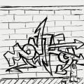 monkeysk8