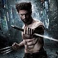 Wolverine9900