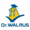 大井 Walrus