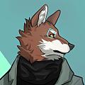 Sok.Wolf