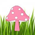 紅色小蘑菇