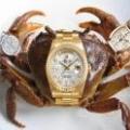 河蟹买了块表