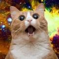 宇宙蔓蔓貓