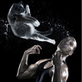 貓咪迴旋踢