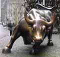 Bull1688