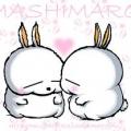 Mashimaro11