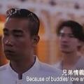 浩南愛山雞