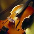 Violin6918