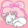 我愛瑪麗貓