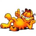 淘氣的加菲貓