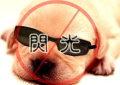 shian0116