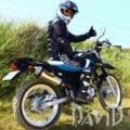 DAVID 99
