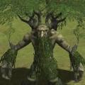 森林守護者