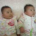 sjyang12151976