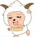 羊咩咩愛奔跑