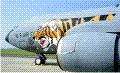 tiger51