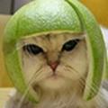 Tatsuya5714
